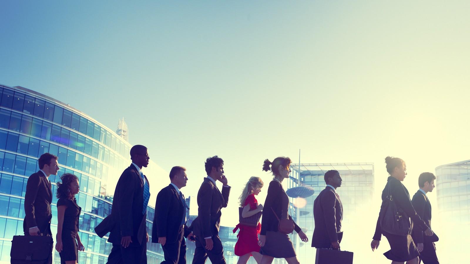 delegate of diversity