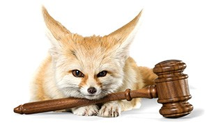 FoxLaw