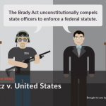 Quimbee: Printz v. United States